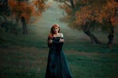 Μόνοι λυπημένοι περίπατοι κοριτσιών μόνο στο φοβερό σκοτεινό επικίνδυνο δάσος στο μακρύ πράσινο σμαραγδένιο φόρεμα και το αδιάβρο στοκ φωτογραφία