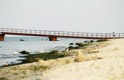 Μόνο κορίτσι σε μια εγκαταλειμμένη παραλία κοντά στην αποβάθρα στοκ φωτογραφίες με δικαίωμα ελεύθερης χρήσης