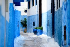 Μπλε χρωματισμένοι τοίχοι, medina της Rabat, Morocoo στοκ φωτογραφία
