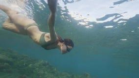 Νέα γυναίκα που βουτά στο κρύσταλλο - σαφές ωκεάνιο νερό Γυναίκα που κολυμπά με αναπνευτήρα στα γυαλιά στο διαφανές θαλάσσιο νερό φιλμ μικρού μήκους