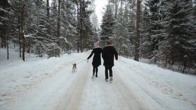 Νέα όμορφη οικογένεια που έχει τη διασκέδαση με ένα σκυλί στο χειμερινούς δασικούς άνδρα και τη γυναίκα που τρέχουν με το λαγωνικ απόθεμα βίντεο