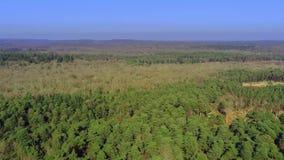 Νέο δασικό εθνικό πάρκο στην Αγγλία άνωθεν φιλμ μικρού μήκους