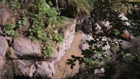 Νερό που ρέει κάτω από το δύσκολο βουνό στο πράσινο δάσος απόθεμα βίντεο
