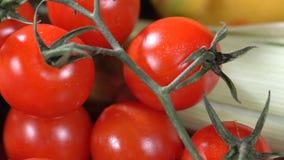 Ντομάτες με το σκόρδο και τα καρυκεύματα απόθεμα βίντεο