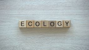 Οικολογία, χέρια που ωθεί τη λέξη στους ξύλινους κύβους, προστασία του περιβάλλοντος, ανακύκλωση απόθεμα βίντεο