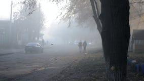 Οι άνθρωποι περπατούν γύρω από την πόλη σε ένα θερινό πρωί Μαύρες σκιαγραφίες του αστικού δέντρου απόθεμα βίντεο