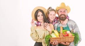 Οι γονείς και η κόρη γιορτάζουν την έννοια φεστιβάλ συγκομιδών συγκομιδών Συγκομιδή λαχανικών κηπουρών οικογενειακών αγροτών που  στοκ φωτογραφία με δικαίωμα ελεύθερης χρήσης