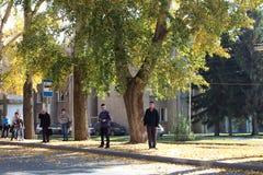 Οι επιβάτες ομάδων ανθρώπων στην πλατεία Kirov στάσεων λεωφορείου αναμένουν τις δημόσιες συγκοινωνίες το φθινόπωρο στο Novosibirs στοκ εικόνες