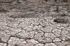 Οι ρωγμές που προκαλούνται επίγειες την ξηρασία που προκαλείται από από τις ελλείψεις νερού στοκ φωτογραφία με δικαίωμα ελεύθερης χρήσης
