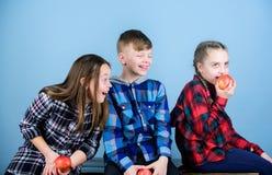 Οι φίλοι αγοριών και κοριτσιών τρώνε το πρόχειρο φαγητό μήλων χαλαρώνοντας Υγιής να κάνει δίαιτα και βιταμινών διατροφή Έννοια σχ στοκ φωτογραφία με δικαίωμα ελεύθερης χρήσης