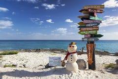 Οι προορισμοί ταξιδιού καθοδηγούν καραϊβική παραλία Cozumel επιφύλαξης Punta Sur την οικολογική στοκ φωτογραφία