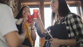 Ομάδα φίλου που έχει τον καλό χρόνο πίνοντας απόθεμα βίντεο