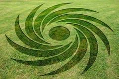 Ομόκεντρο σπειρών λιβάδι κύκλων συγκομιδών συμβόλων πλαστό διανυσματική απεικόνιση