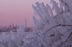Ορίζοντας πόλεων του Τορόντου κατά τη διάρκεια της χειμερινής πολικής δίνης στοκ εικόνα
