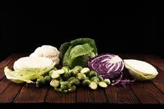 Οργανικά κεφάλια λάχανων Αντιοξειδωτική ισορροπημένη διατροφή που τρώει με το κόκκινο λάχανο, το άσπρο λάχανο και το κραμπολάχανο στοκ εικόνες