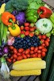 οργανικά λαχανικά νωπών καρπών στοκ φωτογραφία