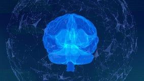 Ο ανθρώπινος ψηφιακός εγκέφαλος περιστρέφεται στη δομή του πλέγματος απεικόνιση αποθεμάτων