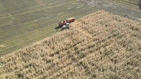 Ο ανώτερος μπαλτάς χορτονομής τομέων χύνει τη μάζα καλαμποκιού στο ρυμουλκό φιλμ μικρού μήκους