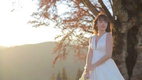 Ο γάμος νυφών κρατά μια γαμήλια ανθοδέσμη στο ηλιοβασίλεμα στο δέντρο και το υπόβαθρο βουνών Ο ήλιος πηγαίνει κάτω από το εξωτερι απόθεμα βίντεο