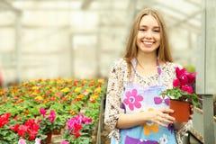 Ο εργαζόμενος με στο δοχείο λουλουδιών στο θερμοκήπιο στοκ φωτογραφίες