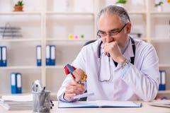 Ο ηλικίας αρσενικός καρδιολόγος γιατρών με το πρότυπο καρδιών στοκ εικόνες