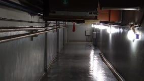 Ο θλιβερός διάδρομος ενός παραμελημένου δημόσιου κτιρίου φιλμ μικρού μήκους