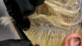 Ο κομμωτής προκαλεί το χρώμα στις ρίζες του ξανθού προτύπου, κλείνει επάνω απόθεμα βίντεο