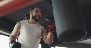 Ο μπόξερ στο δαχτυλίδι, ασκεί την τεχνική απεργιών, ράφι, υπεράσπιση και αντοχή, υγρό στην κατάρτιση απόθεμα βίντεο