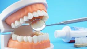 Ο οδοντικός γιατρός εξετάζει τη στοματική κοιλότητα απόθεμα βίντεο