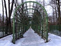 Ο διάδρομος του πράσινου κήπου σχηματίζει αψίδα το τέντωμα στον ορίζοντα στοκ εικόνα