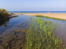 Î•stuaries de la NEDA del río en Peloponnesse, Grecia imagenes de archivo