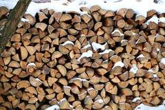 δάσος σύστασης δαχτυλιδιών σωρών μερών κούτσουρων λεπτομέρειας ξύλινο στοκ εικόνες με δικαίωμα ελεύθερης χρήσης