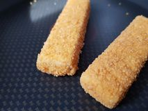 Δάχτυλα ακατέργαστων ψαριών στοκ φωτογραφία