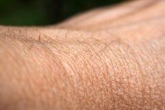 Δέρμα χεριών με τις πρησμένες φλέβες στοκ φωτογραφία