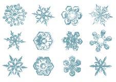 Διανυσματικό συρμένο χέρι σκίτσο snowflakes της απεικόνισης στο άσπρο υπόβαθρο ελεύθερη απεικόνιση δικαιώματος