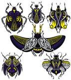 Διαφορετικά διακοσμητικά έντομα δερματοστιξιών με τα φτερά διανυσματική απεικόνιση