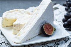 Δύο κομμάτια των γαλλικών μαλακών τυριών Brie και Camembert με την άσπρη φόρμα και την ισχυρή μυρωδιά, που εξυπηρετούνται με τα φ στοκ φωτογραφία
