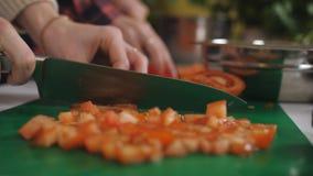 Δύο ντομάτες περικοπών κοριτσιών στην κουζίνα Μαγειρεύοντας φυτική σαλάτα σιτηρέσιο υγιεινό απόθεμα βίντεο