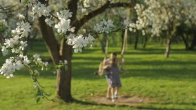 Δύο χαριτωμένα παιδιά που έχουν τη διασκέδαση σε μια ταλάντευση στον ανθίζοντας παλαιό κήπο δέντρων μηλιάς υπαίθρια την ηλιόλουστ απόθεμα βίντεο