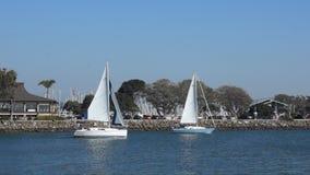 Δύο Sailboats στο σημείο της Dana απόθεμα βίντεο