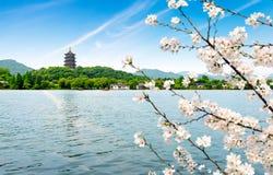 δύση λιμνών hangzhou της Κίνας στοκ φωτογραφία με δικαίωμα ελεύθερης χρήσης