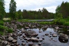 Δύσκολος ποταμός στη μέση του δάσους στοκ εικόνα με δικαίωμα ελεύθερης χρήσης