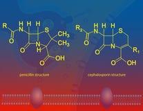 Î ² - lactam antibiotica Royalty-vrije Stock Foto