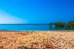 Île Andaman de Neills image libre de droits