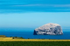 île basse de roche des oiseaux marins Royaume-Uni l'Europe photo libre de droits