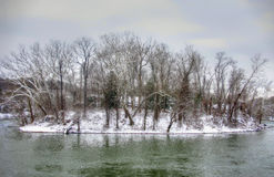 Île congelée en rivière Images libres de droits