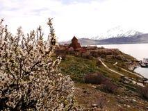 Île d'Akdamar et le temps d'église d'Akdamar au printemps images stock