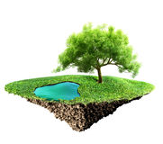 Île d'herbe illustration stock