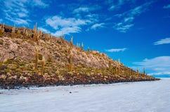 Île d'Incahuasi en Salar de Uyuni bolivia Images stock