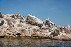Île d'oiseau en pierre au milieu de la rivière Image stock